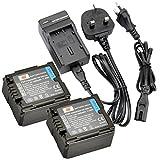 DSTE® 2pcs VW-VBG130 Rechargeable Li-ion Battery + Charger DC61U for Panasonic DMW-BLA13, DMW-BLA13E, VW-VBG130, VW-VBG130E, VW-VBG130K, VW-VBG130PP and Panasonic AG-HMC150, HMC150P, HMC150PJ, HMC153MC, HMC70, HMR10, HMR10A, HMR10E, HMR10P, HSC1U, HDC-DX