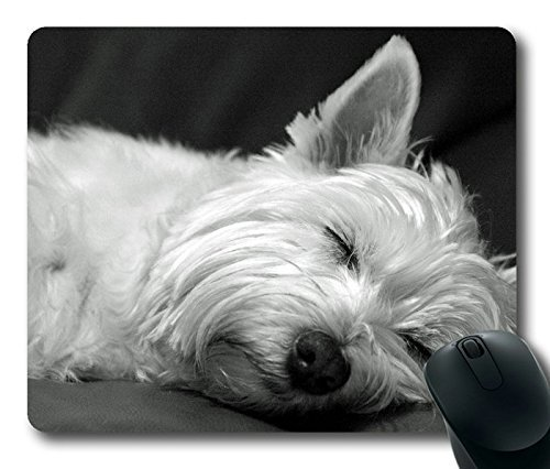cute-westie-terrier-dog-asleep-pop-masterpiece-limited-design-oblong-mouse-pad-by-cases-mousepads
