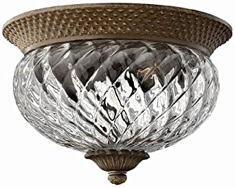 Hinkley Lighting H4102 2 Light Indoor Flush Mount Ceiling Fixture from the Plant, Pearl Bronze