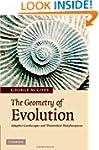 The Geometry of Evolution: Adaptive L...