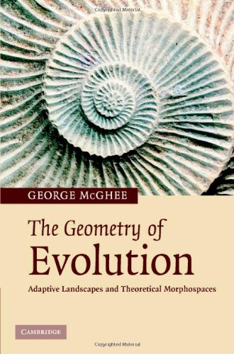 The Geometry of Evolution. Adaptive Landscapes and Theoretical Morphospaces