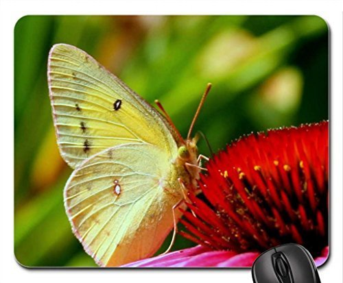 sunlight-wings-mouse-pad-mousepad-butterflies-mouse-pad