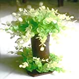 Veena Artificial bonsai with white and green rounded leaves
