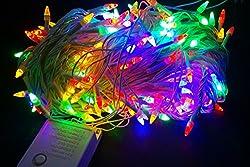 219 Led Multicolor LED Light with Remote Diwali Festive Decorative Light