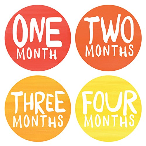Lucy Darling Baby Monthly Stickers - Gender Neutral - Rainbow Spectrum - Months 1-12