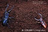 【ガス抜き済み】High effect新・完熟発酵マット★5リットル袋入り【クワガタ採卵及び飼育用】(昆虫マット)