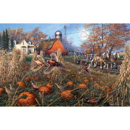 Cheap SunsOut James Meger Pheasant Pumpkin Patch 1000pc Jigsaw Puzzle (B001YJZPZQ)