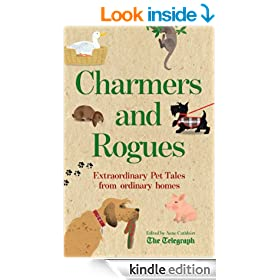 Charmers and Rogues