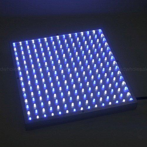 LED Wholesalers 2501W+B Blue/White 225 LED 13.8