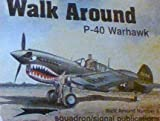 Image of P-40 Warhawk - Walk Around No. 8