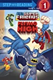 Super Friends: Flying High (Step into Reading)