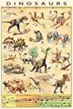 Posters: Dinosaurs Poster - Characters And Evolution (36 x 24 inches)