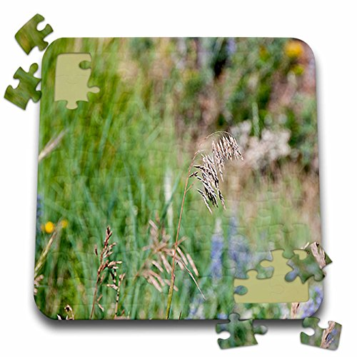 Jos Fauxtographee Realistic - A Weed Floating in the Wind on a Grassy Weed Backdrop with Spots of Blue and Yellow - 10x10 Inch Puzzle (pzl_47445_2)