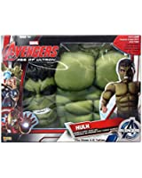 Imagine by Rubies The Hulk Costume Muscle Chest Shirt Set