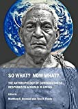 img - for So What? Now What? The Anthropology of Consciousness Responds to a World in Crisis book / textbook / text book