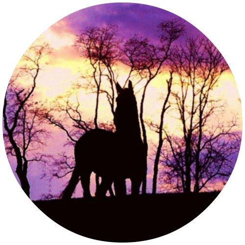 Tortenaufleger Tortenfoto Aufleger Foto Bild Pferd rund ca. 20 cm (4) *NEU*OVP*