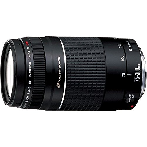Canon EF 75-300mm f/4-5.6 III USM Telephoto Zoom Lens for Canon SLR Cameras (Certified Refurbished) (Canon Ef 16 35 F4 compare prices)
