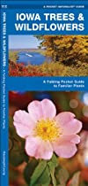 Iowa Trees & Wildflowers: A Folding Pocket Guide to Familiar Species (Pocket Naturalist Guide Series)