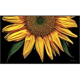 Toland Home Garden Sunflowers on Black 18 x 30-Inch Decorative USA-Produced Standard Indoor-Outdoor Designer Mat 800037