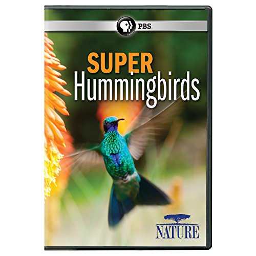 NATURE: Super Hummingbirds DVD