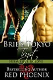 img - for Brie's Tokyo Tryst (Submissive in Love, #1) book / textbook / text book
