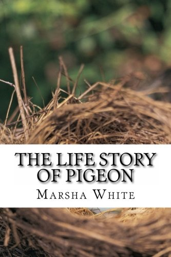 The Life Story of Pigeon: Moving from trees to windows, a side-effect of deforestation PDF