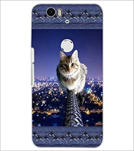 PrintDhaba Kitty D-3065 Back Case Cover for HUAWEI NEXUS 6P (Multi-Coloured)
