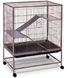 Prevue Pet Products Rat and Chinchilla Cage 495 Earthtone Dusted Rose, 31-Inch by 20-1/2-Inch by 40-Inch
