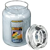Yankee Candle Company Crisp Morning Air Large Jar Candle