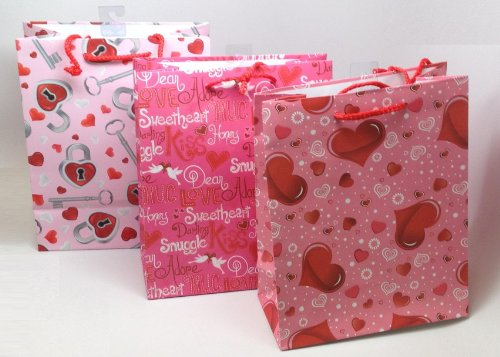 Large Valentine's Day Gift Bags; 12 Pack