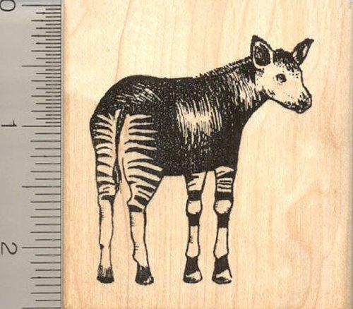 Okapi Rubber Stamp, African Congo Wildlife