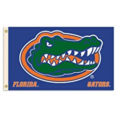 NCAA Florida Gators 2-Sided Flag with Grommets, 3 x 5-Feet by BSI