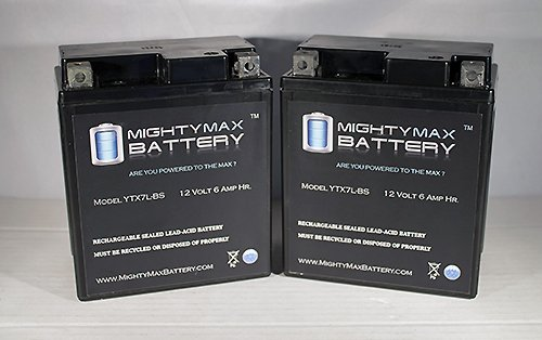 6v Deep Cycle Battery