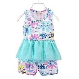 Summer Little Girls\' Clothing shorts Sets Flower Printing Blue 9-12 months