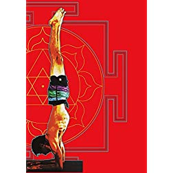 Ashtanga Yoga: A Guide to Intermediate Series with David Garrigues