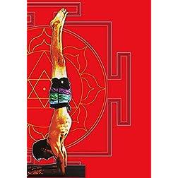 Ashtanga Yoga: A Guide to Intermediate Series with David Garrigues