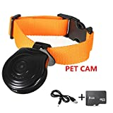 Oumeiou Digital Pet Safety Collar Cam Camera Video Recorder Monitor with 8GB Memory card For Dogs Cats Puppy
