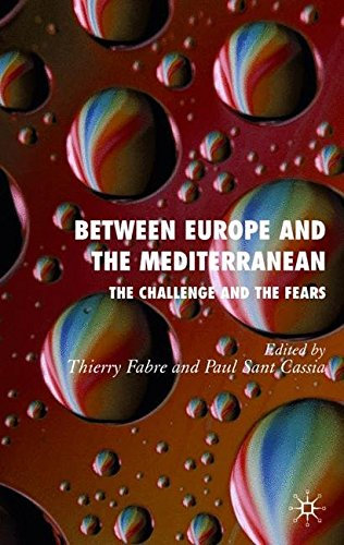 Between Europe and the Mediterranean: The Challenges and the Fears