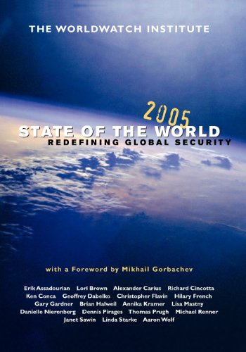 State of the World 2005: Redefining Global Security (State of the World (Paperback))