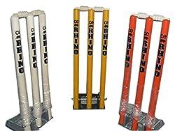 Rhino Top Quality Cricket Spring Back Cricket Stump Set-9