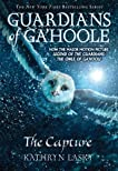 Guardians of Ga'Hoole: The Capture