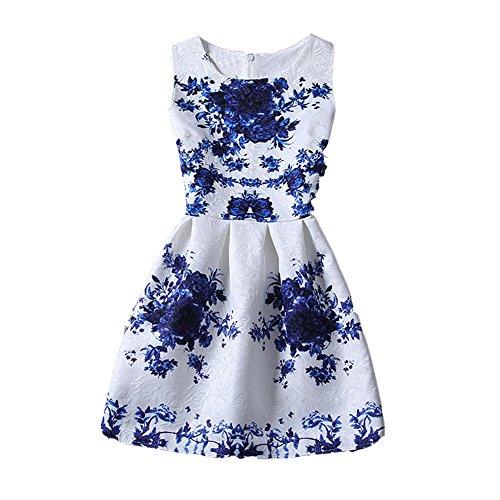 ZAY Womens White Contrast Blue Porcelain Print Flare Sleeveless Vintage Floral Dress Asian