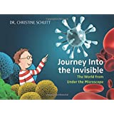 Journey Into the Invisible: The World from Under the Microscope
