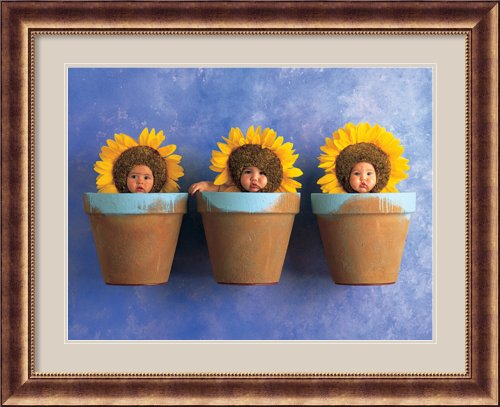 Sunflower Trio By Anne Geddes Framed front-1025736