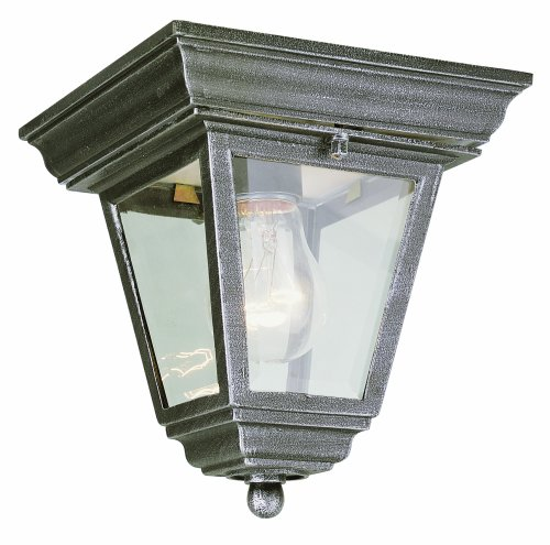 Trans Globe Lighting 4903 WH 7-1/4-Inch 1-Light Outdoor Flushmount, White
