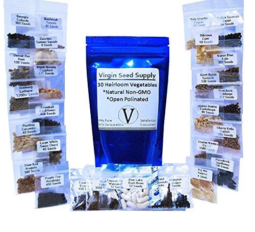 10000-seed-lot-30-vegetable-fruit-variety-pack-survival-non-gmo-varieties