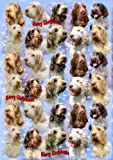 Italian Spinone Dog Christmas Wrapping Paper Design by Starprint