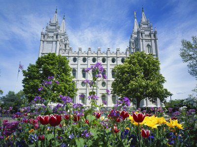 View of Lds Temple  Flowers in Foreground, Salt