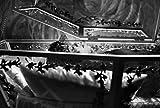 Image de Blancanieves [Blu-ray]