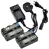 DSTE® 2x NP-FM500H Rechargeable Li-ion Battery + Travel Charger DC01U for Sony a200 a300 a350 a700 Alpha a58 Alpha a99 DSLR-A100 DSLR-A100/B DSLR-A100H DSLR-A100K DSLR-A100K/B DSLR-A100W DSLR-A100W/B DSLR-A200 DSLR-A200K DSLR-A200W DSLR-A200WB DSLR-A300
